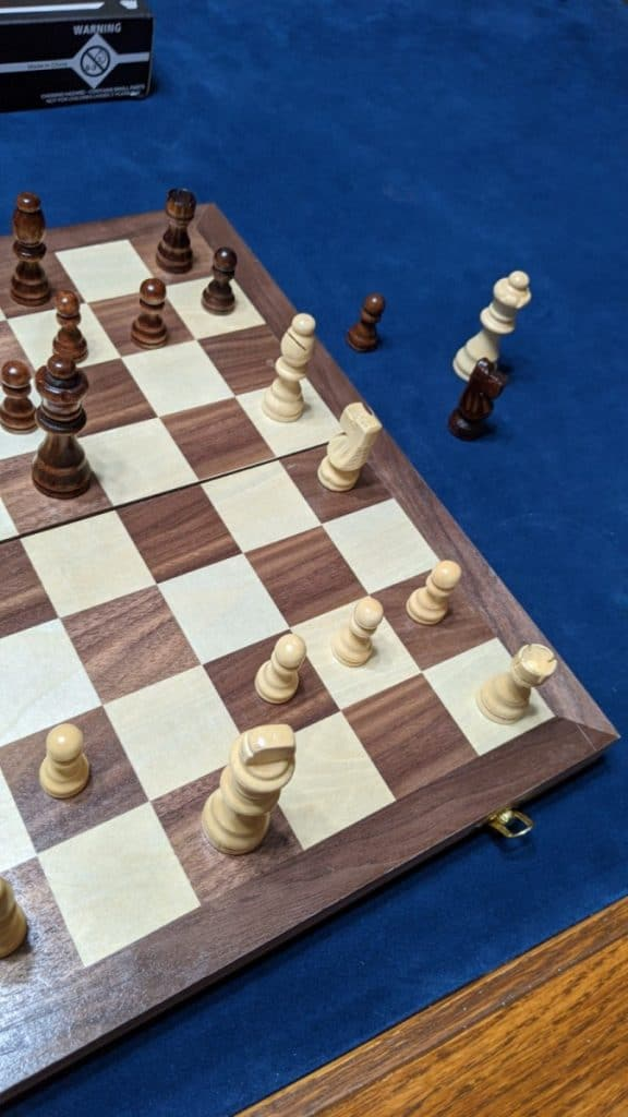 king in check chess