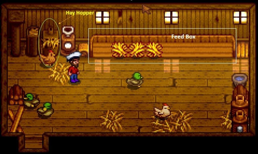 stardew valley inside chicken coop