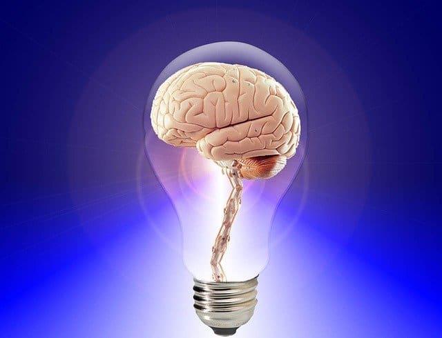 keen mind brain in lightbulb
