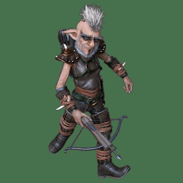 gnome crossbow expert