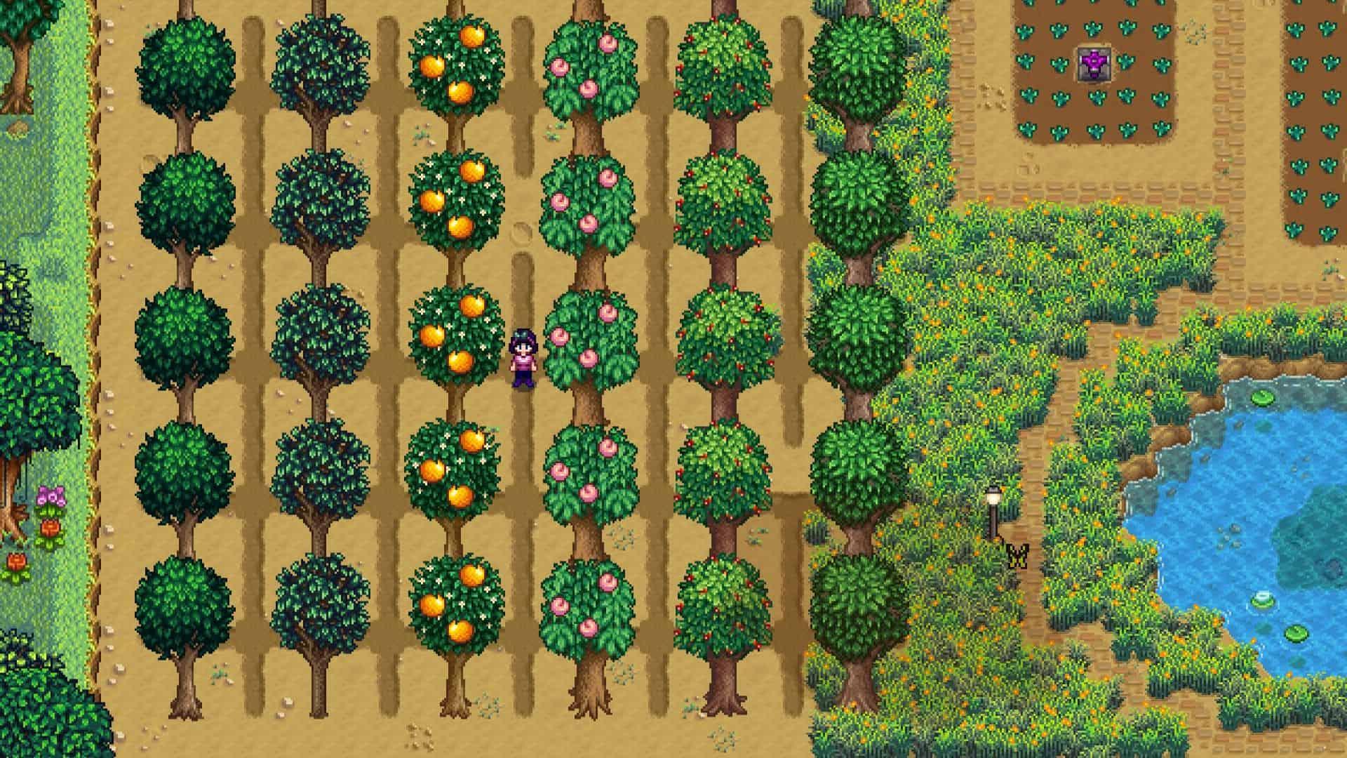 fruit tree orchard stardew valley